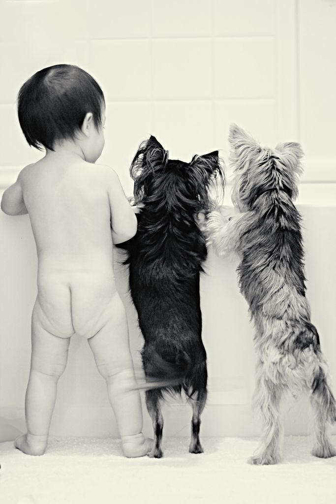 Baby and Dogs photography Bath time I wonder if Izzie would pose like this with SF
