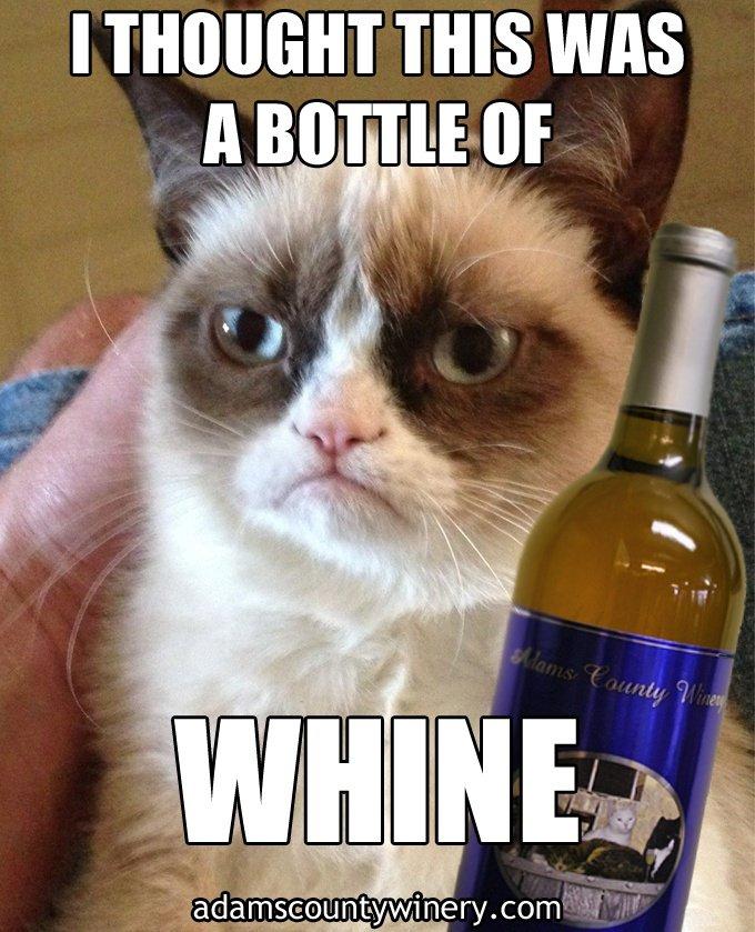 funny wine grumpy cat