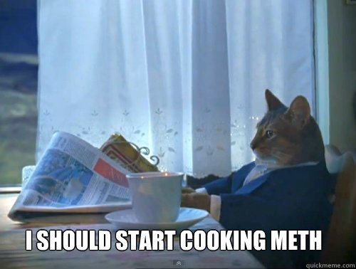 I should start cooking meth I should start cooking meth The e Percent Cat