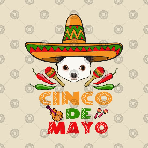 Cinco de Mayo Chihuahua Mexican Party Cinco De Mayo T Shirt