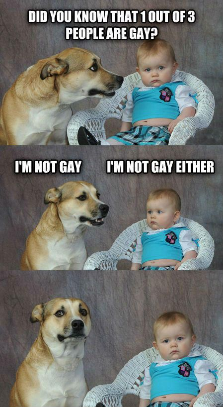 Download the Incredible Funny Dog Pictures with Captions Facebook