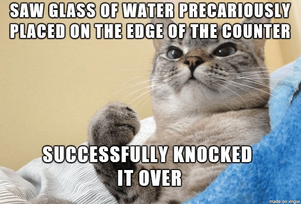 Funny cat meme about how cats love knocking things over from the edge of the counter