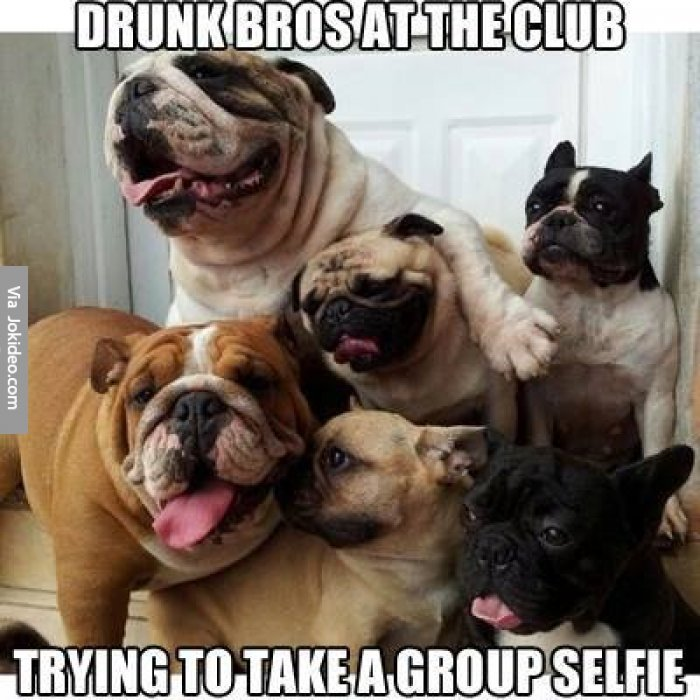 Drunk bros at a club dog meme