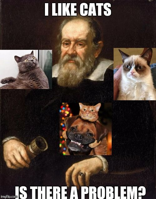 Galileo and furry friends I LIKE CATS IS THERE A PROBLEM