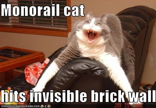 Monorail cat hits invisible brick wall