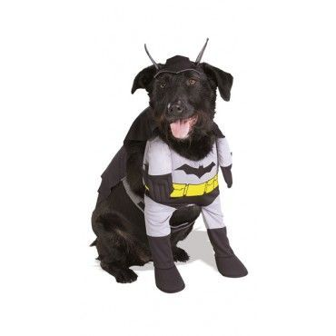 """Hilarious Pet Costumes Dress up your doggie or cat for Halloween in one of these adorable """"costumes"""" for pets"""