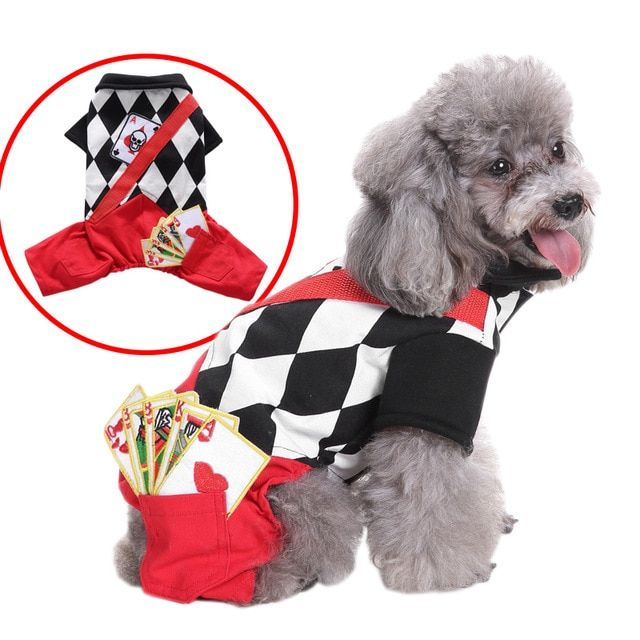 Funny Pet Costume Magician Suit For Cat Dog Halloween Christmas Cotton Sweater Pet Autumn Winter Coat