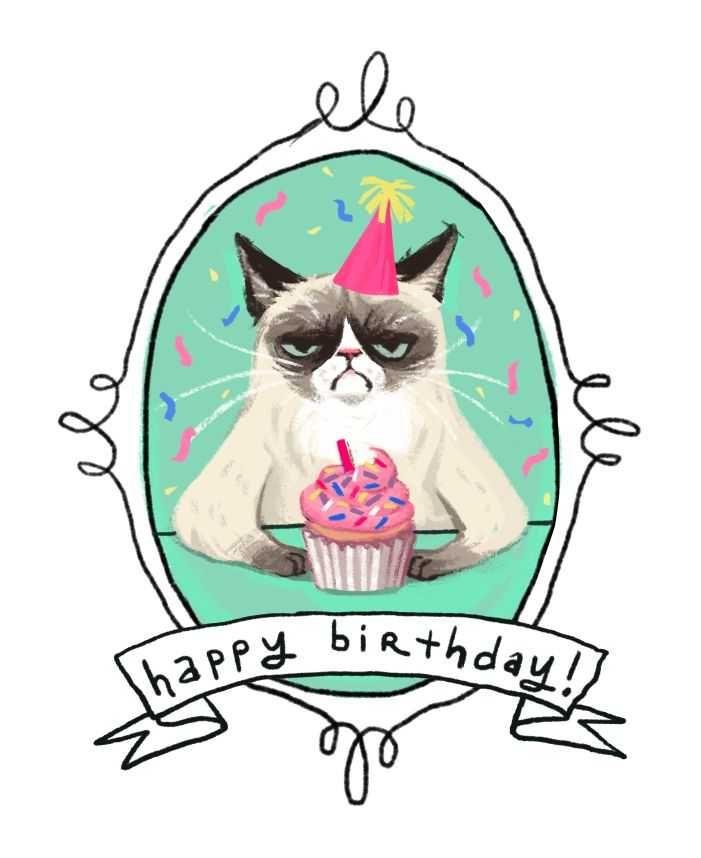 meme happy birthday grumpy cat grumpy cat pinterest grumpy cat