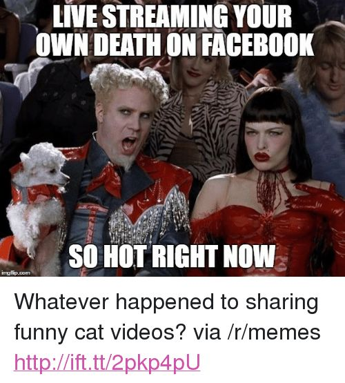 Funny Memes and Videos LIVE STREAMING YOUR OWN DEATHON FACEBO0K SO HOT RIGHT