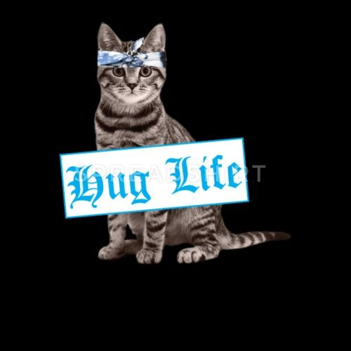 Hug Life Funny Cat Design For Cat Lovers and Owners by spitzys