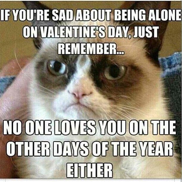 grumpy cat valentine memes Sad on Valentine s Day Hilarious