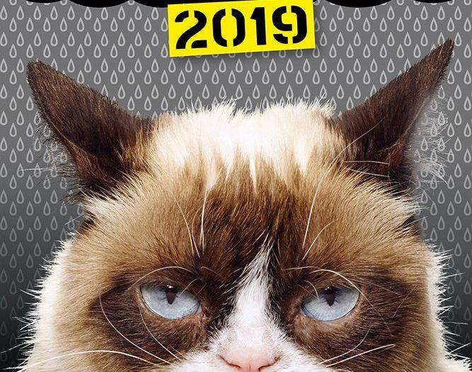 Grumpy Cat 2019 Diary Fun Humour Cats Pets Feline
