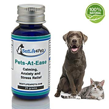 Natural Calming Supplement for Dogs and Cats Pets At Ease Provides Effective Anxiety