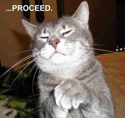s funny on funny cat funny cat funny cat funny cat funny cat funny cat funny