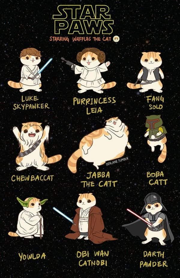 Star Wars Animals Heroes Meme