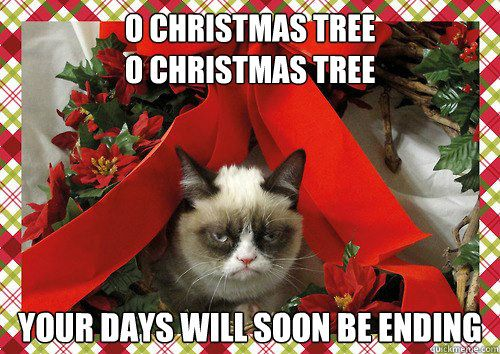 o christmas tree o christmas tree your days will soon be ending A Grumpy Cat Christmas