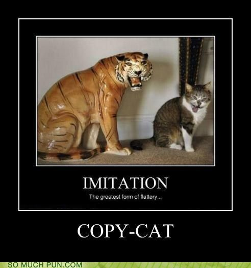 cat copy copycat double meaning literalism