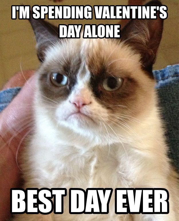 Grumpy Cat Isn t Excited For Valentine s Day