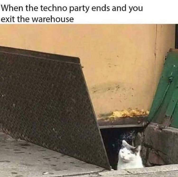 "I m sick of the fucking ""losing your mind"" techno memes So here s something possibly better that we can all relate to"