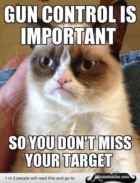 Gun Control Grumpy Cat Memes