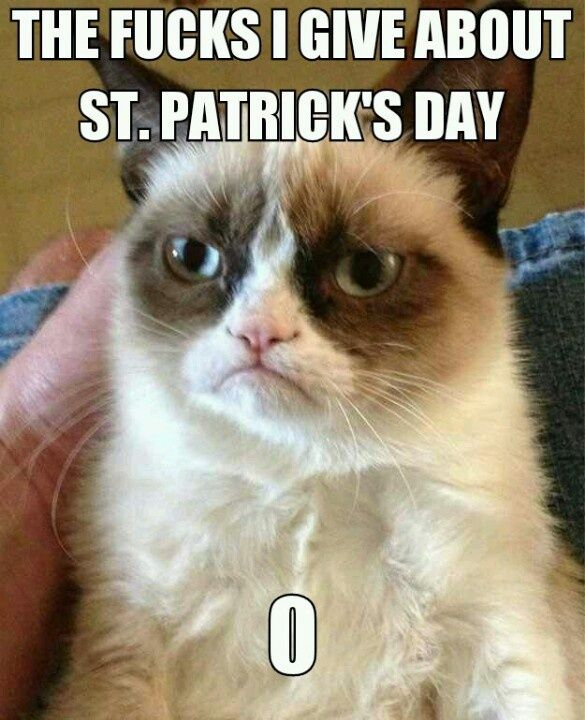 St patricks day grumpy cat grumpy cat mania Pinterest