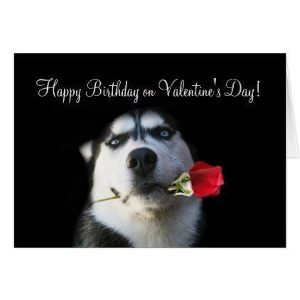 Happy Birthday Dog Quotes Inspirational Luxury Husky Meme Cute Husky Dog Happy Birthday Valentine S Day