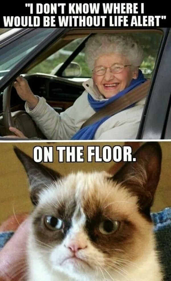 Hilarious Grumpy Old People Memes Funny Cats