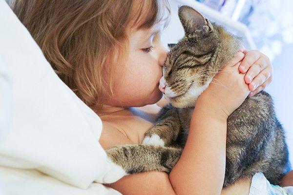 A cat headbutting a little girl