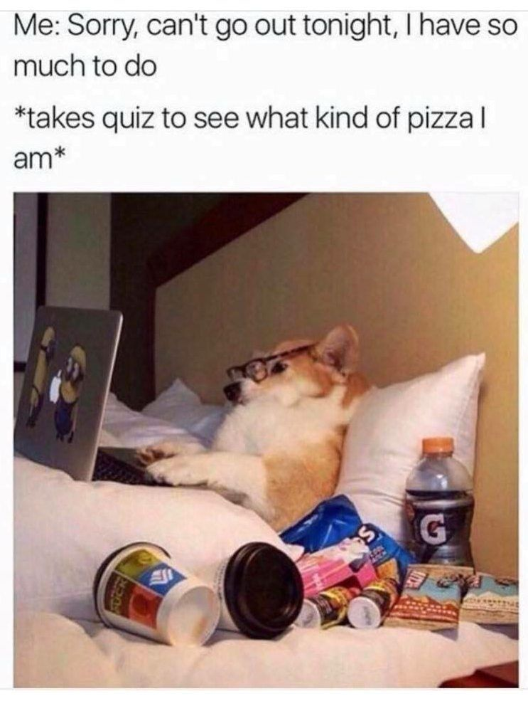 SDL funny meme pizza quiz from mommy needs vodka