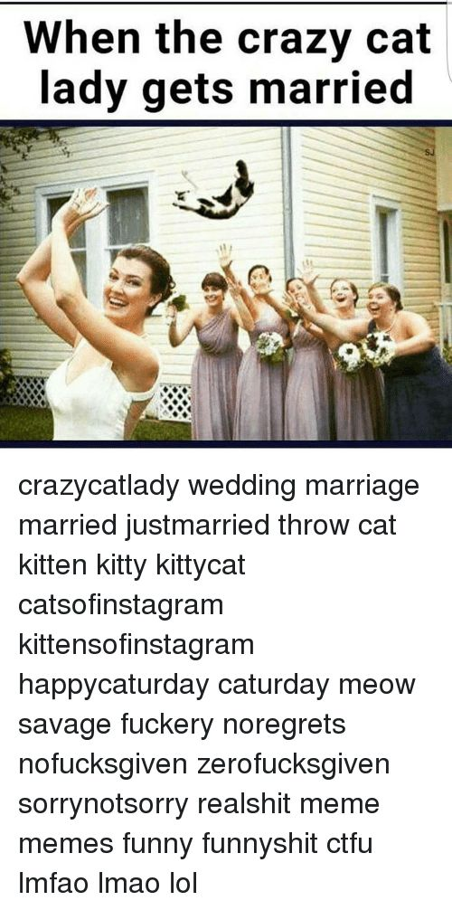 Memes 🤖 and Cat When the crazy cat lady s married crazycatlady wedding