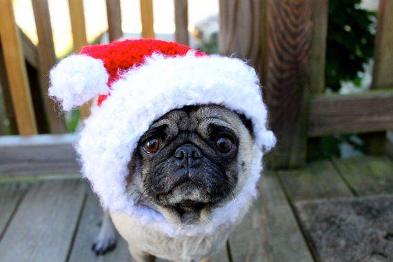 Dog Hat Santa Christmas Cheer Made to Order