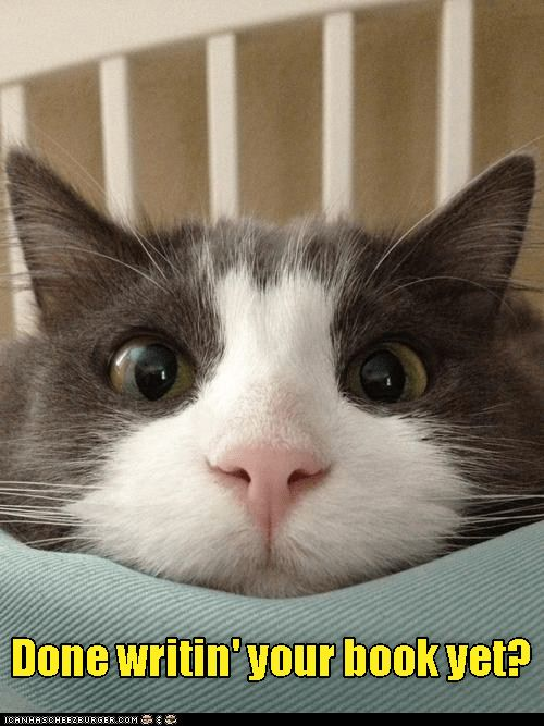 Meme of cat face close up asking if you are done with your books yet