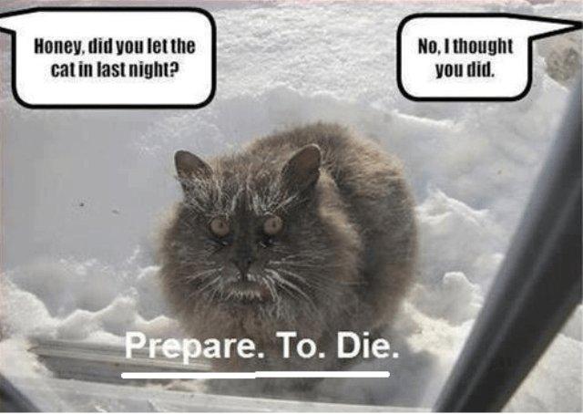 wintermemes14 wintermemes15 wintermemes8 wintermemes4 wintermemes12 wintermemes11