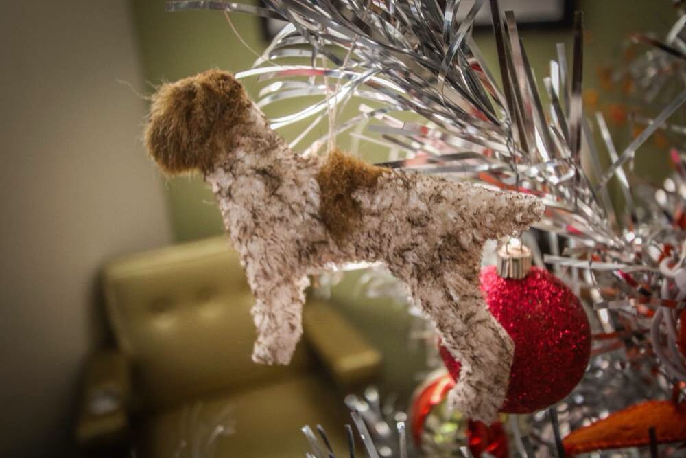 Christmas decoration Wirehaired Pointing Griffon Funny Cute Best Dogs Cute Animals Christmas