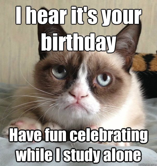 Grumpy Cat Birthday Meme Funny
