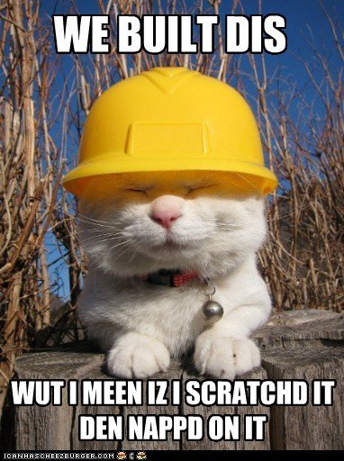 captions Cats politics republican rnc we built this