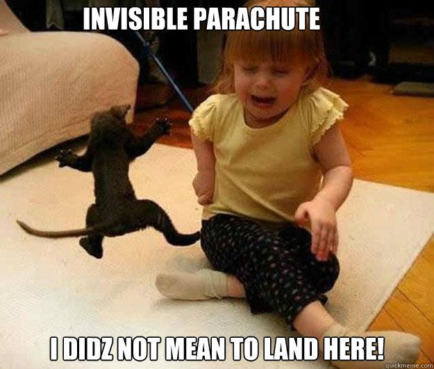 Invisible Parachute Invisible Skydiver Cat