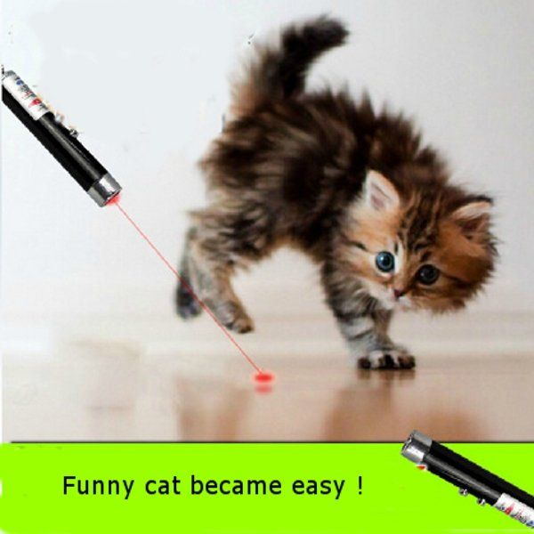 Laser Funny Cat Stick 2 In1 Red Laser Pointer Pen With White LED Light Childrens Play