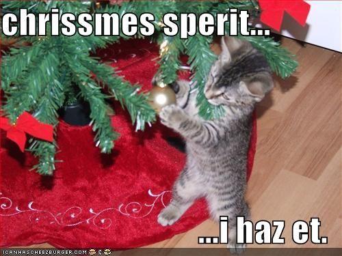 Omg Christmas Lol Cats