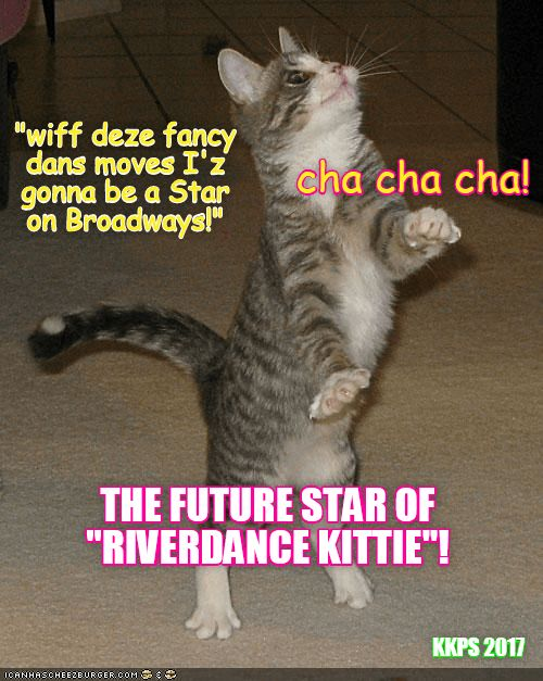 Funny cat meme of dancing kitty captioned saying he going to make it to Broadway
