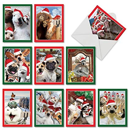 "10 Assorted Animal Christmas Cards with Envelopes 4"" x 5 25"" Funny"
