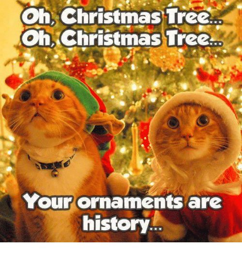 Grumpy Cat Christmas Tree and History Christmas Tree Oh Oh Christmas Tree