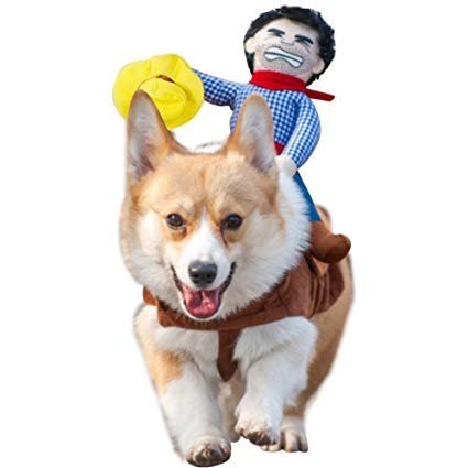 Albabara Cowboy Dog Cat Costume Clothes Knight Rider Novelty Funny Pets Halloween Party Cosplay Pet Suit