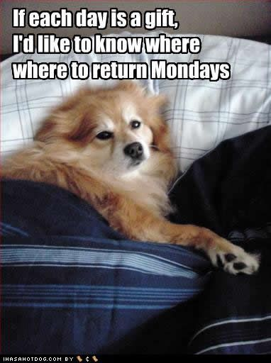 lets return mondays someone else can have them