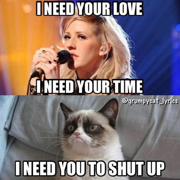 Find the New Funny Grumpy Cat Memes for Kids