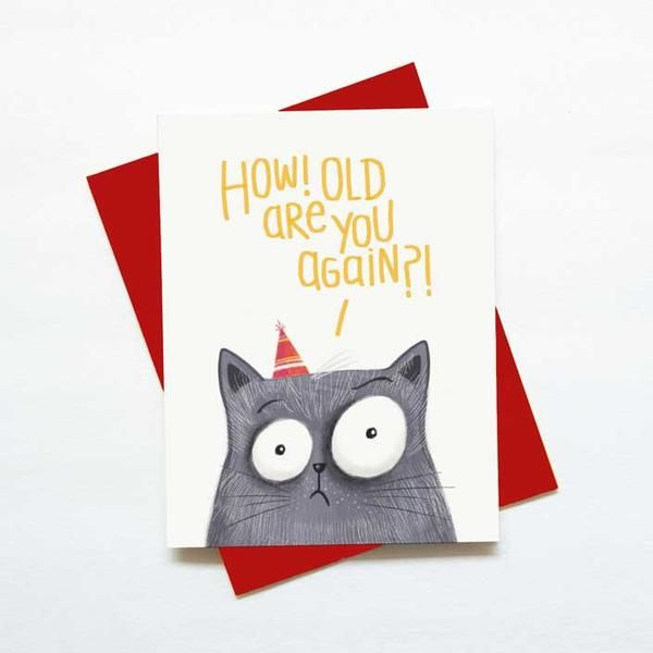 Funny cat birthday card how old are you again
