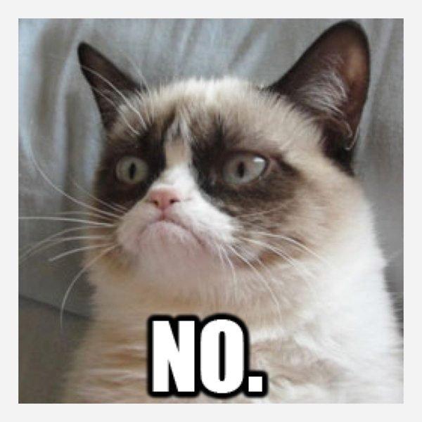 9 Best Grumpy Cat Memes 1