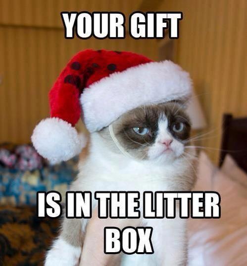 In The Litter Box Funny Christmas Meme