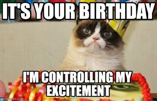 Happy Birthday Meme Cat New Funny Best Friend Birthday Memes Image Memes at Relatably