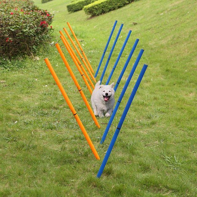 Pet Training Poles Outdoor Dog Agility Sports Equipment Dogs Activity Agility Weave Slalom 12 Pole Set
